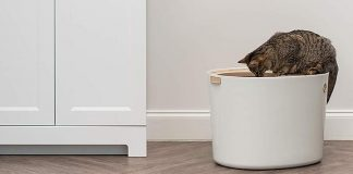 Top Entry Litter Boxes