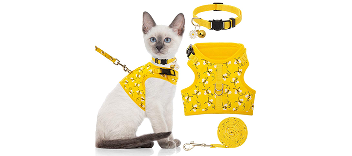 BINGPET Harness with Two D Rings