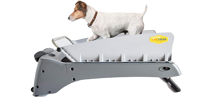 DogTread Premium Small Dog Treadmill