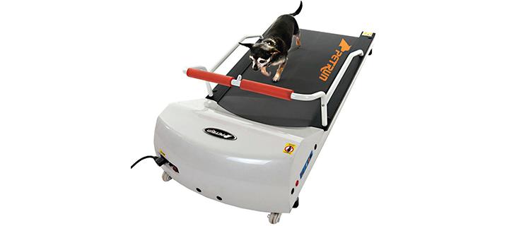 Go Pet Petrun Pr700 Dog Treadmill