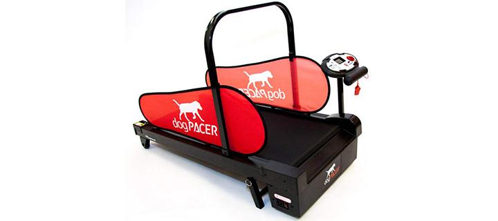 MiniPacer Dog Treadmill