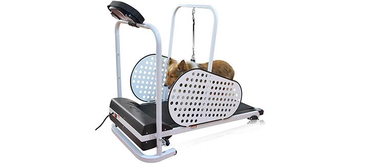 Shelandy Motorized Treadmill